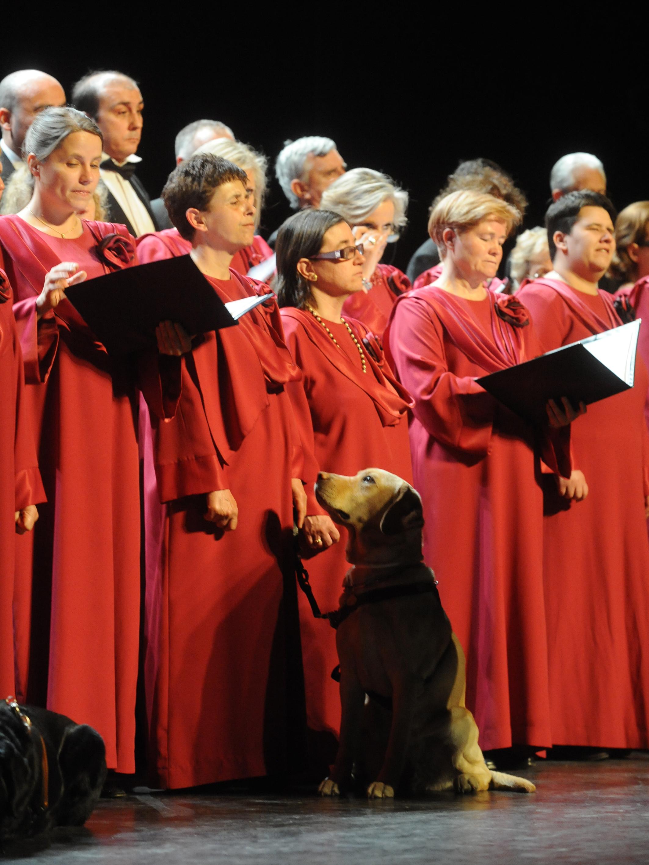 Actuación del Orfeón Fermín Gurbindo de Madrid